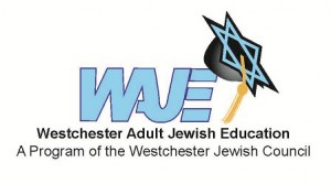 WAJE logo as jpg